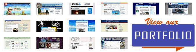 View our website portfolio