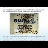 Omega Termite and Pest Control - Get rid of cockroaches!