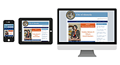 Your website is optimized for iphone, ipad, and other tablets and mobile devices.